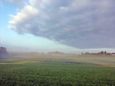 Nebel (5)