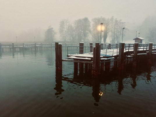 Nebelstimmung (1)