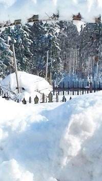 Winterimpressionen (1)