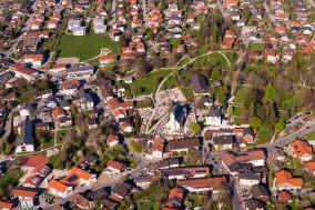 Maibaum-Bernau-1001874