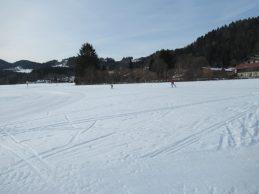 Skater auf der Bergerfeldloipe