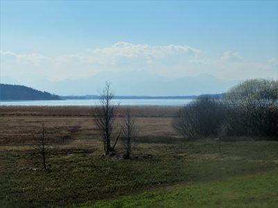 Blick vom Aussichtsturm am Simssee