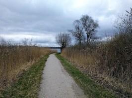 Spaziergang am Chiemsee-Uferweg