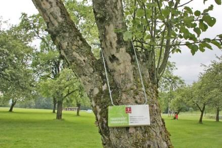 golf-natur05