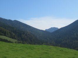 Blick von der Burgaualm zur Hörndlwand