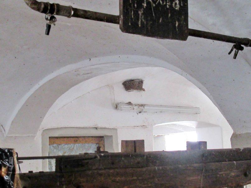 kl-Gewölbe mit Schwalbennest
