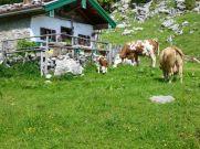 Jubilaeumswanderung Naturschutzgebiet Geigelstein (10)