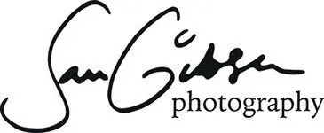 Wedding Photographers in Bristol Retina Logo