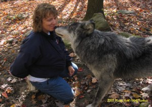 wolfkissing