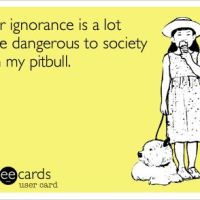 Oh No! You Own Pit Bulls?!