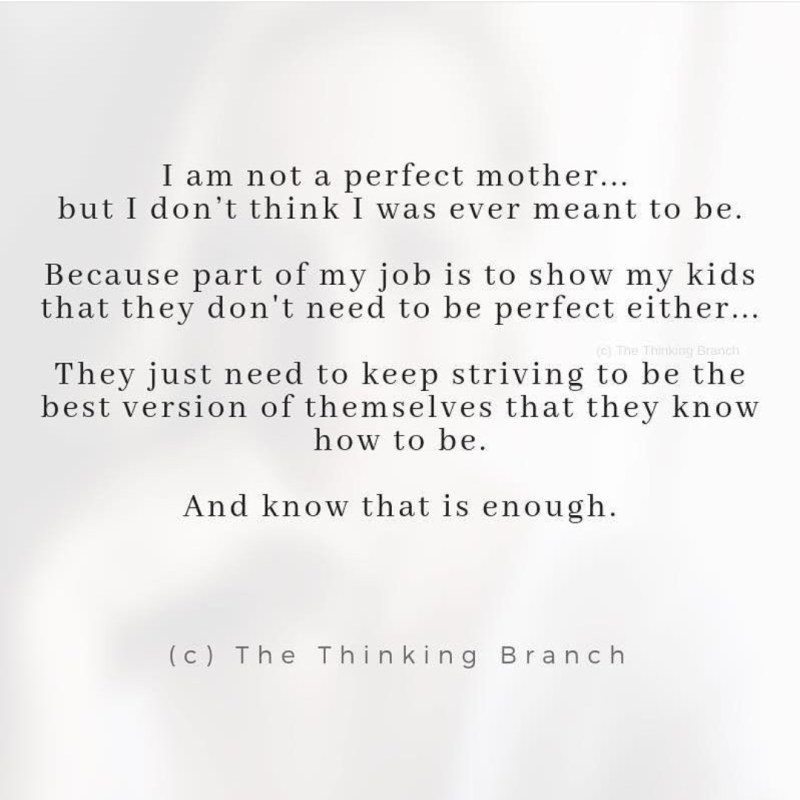 memes for moms in the trenches of motherhood Sammiches and Psych Meds The Thinking Branch