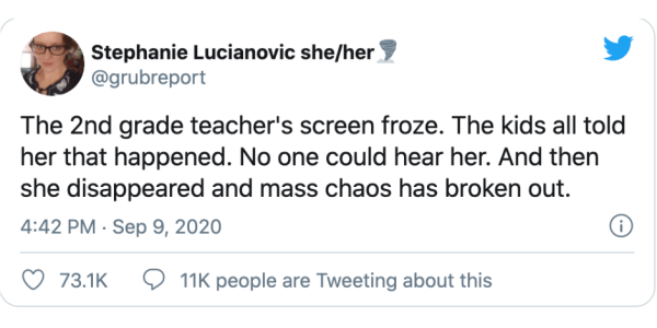 #ZoomOfTheFlies Thread Hilariously Captures The Sh*tshow That Is Zooming With 2nd Graders