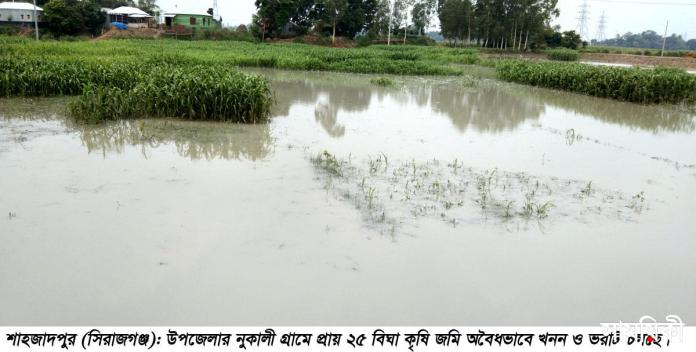 Shahzadpur News 01...05 06 21 01 শাহজাদপুরে অবৈধভাবে ২৫ বিঘা কৃষি জমি খনন ও ভরাট বন্ধের দাবী কৃষকদের