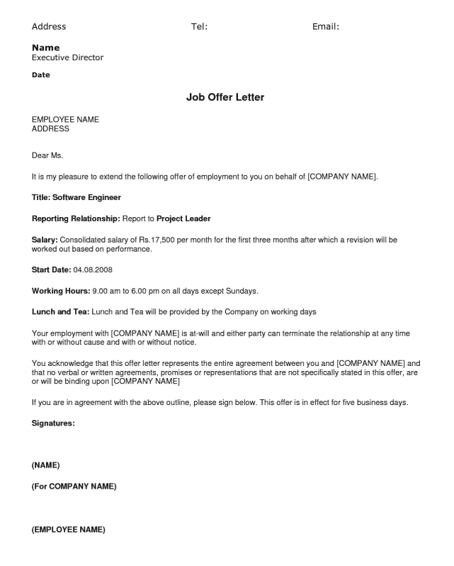 employment offer letter 13 sample offer letters sample letters word 1202