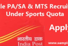 Punjab Circle PA/SA & MTS Recruitment 2015 Under Sports Quota