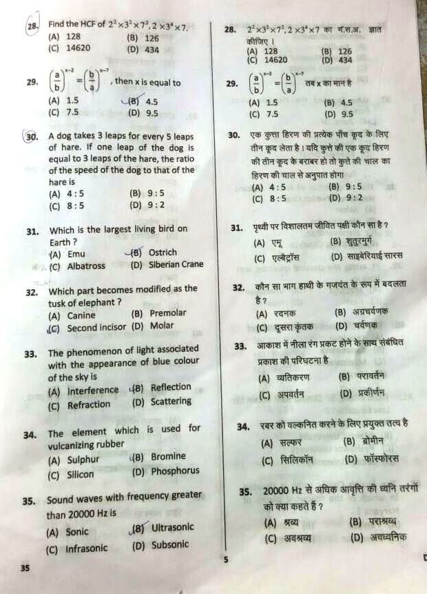 Download 13 November HSSC Clerk Question Paper in Hindi pdf with answer key
