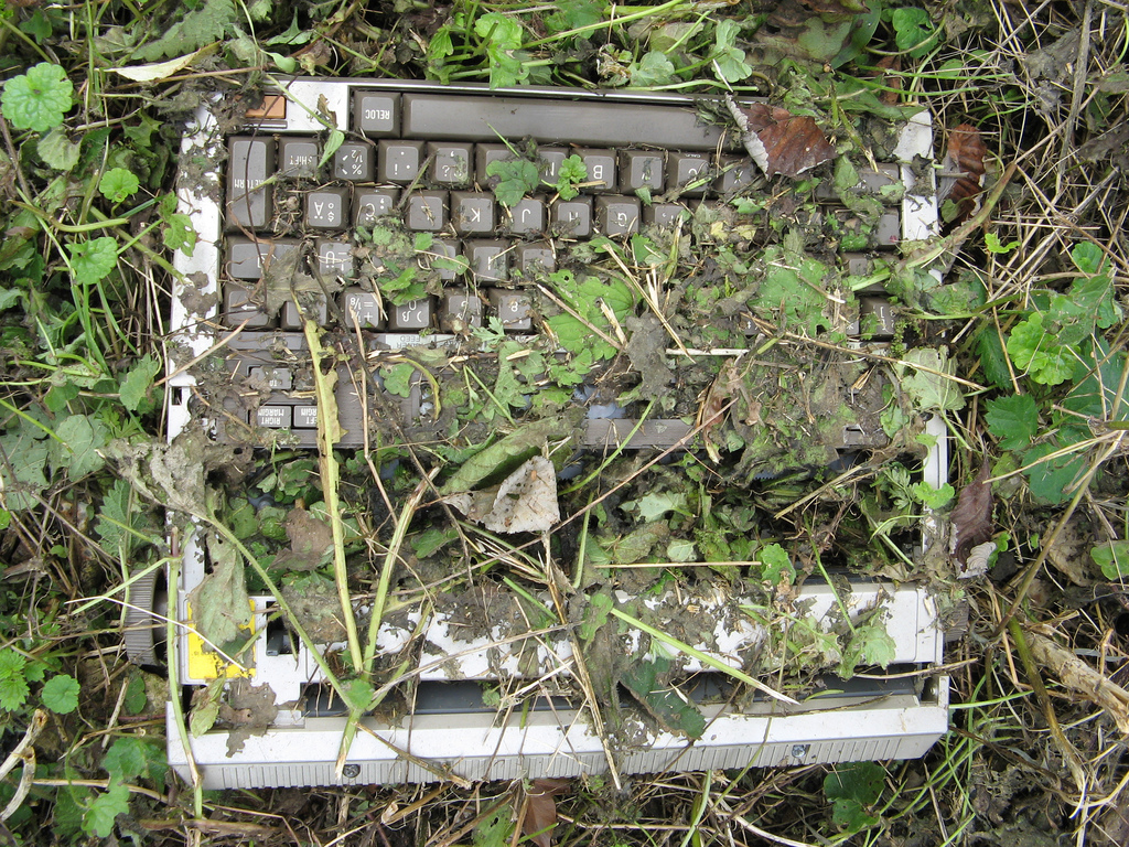 An old typewriter, surrounded by weeds