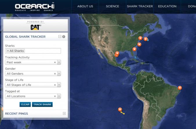 OCEARCH Tracking Map (screenshot)