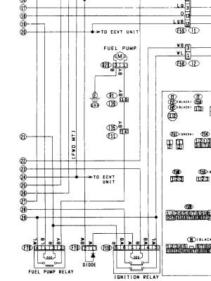 Electrical intermittents Mark Giammalvo