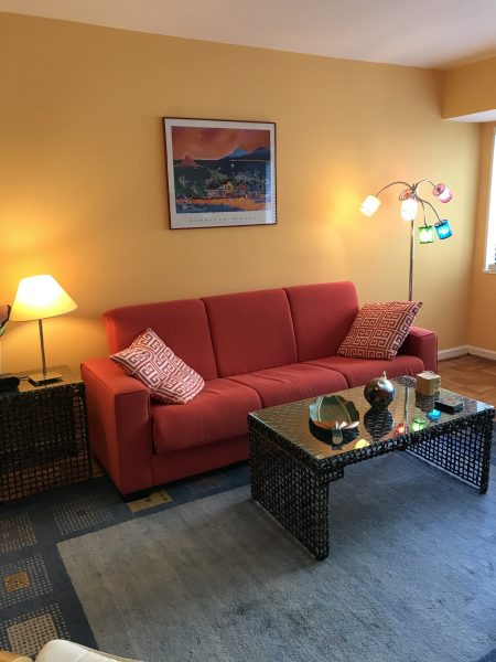 Cheery FURNISHED Studio/Efficiency WITH WORK SPACE Steps from Cleveland Park Metro