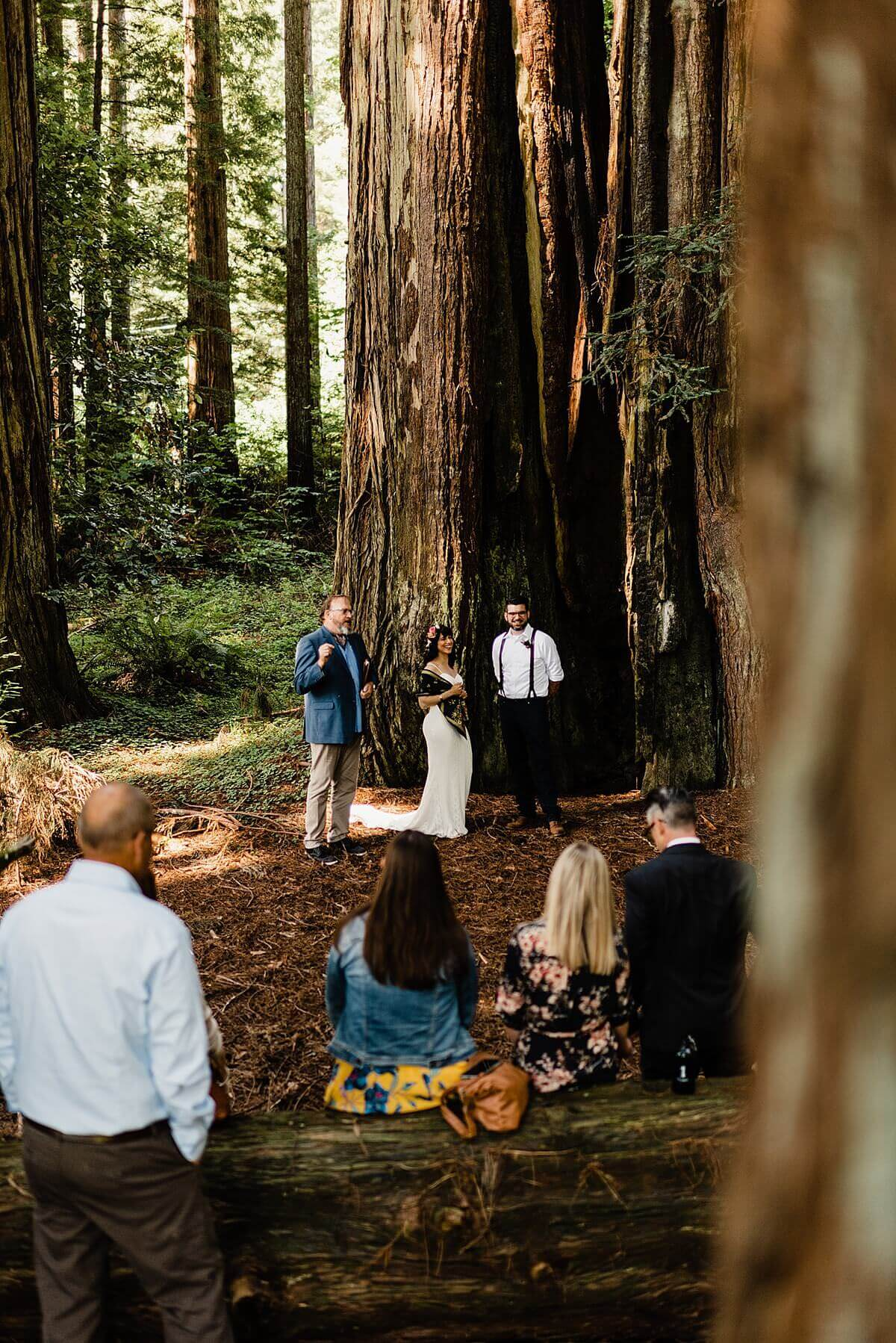 Allison-Brooks-Jedediah-Smiith-Redwoods-Adventure-Elopement-Wedding-S-Photography-Blog_0017.jpg