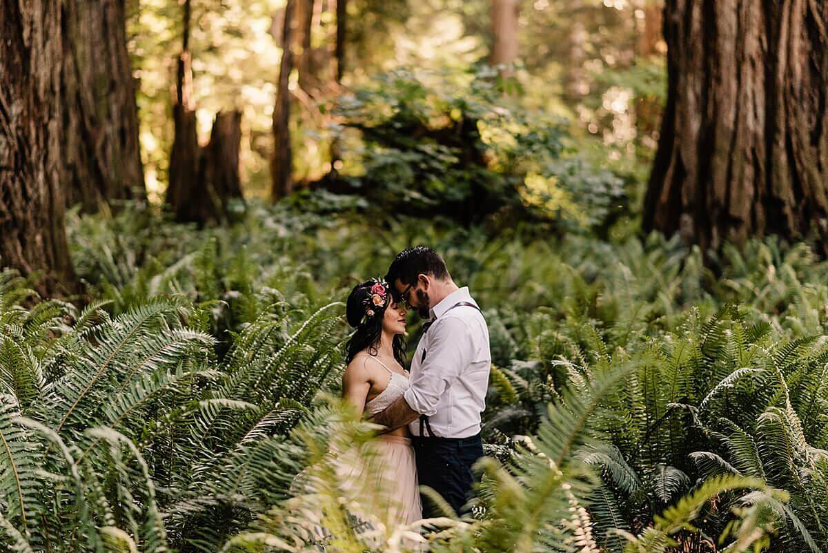 Jedediah Smith Redwoods Adventure Elopement