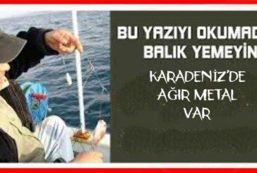 Gökhan Taşpınar: Karadeniz'de o balıkları çocuklara yedirmeyin!