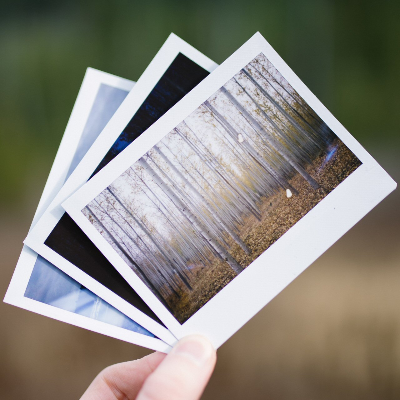 Image Processing & Photography