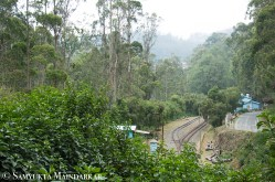 Tucked away among the green hills, Lovedale station is the highest station on the Nilgiri Mountain Railway route from Mettupalayam to Ooty