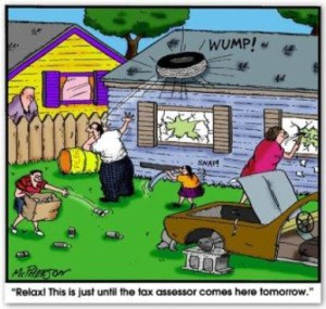 Property Assessments Cartoon Medium