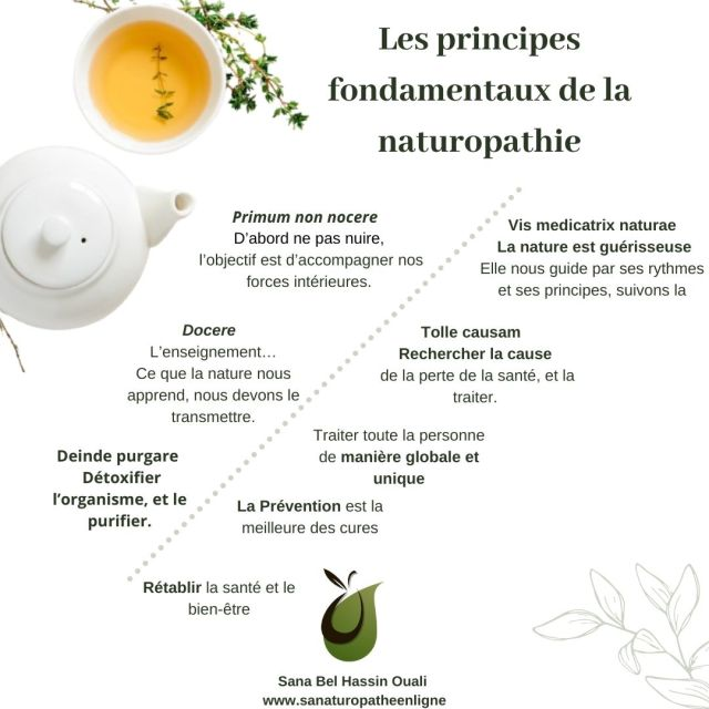 les principes fondamentaux de la naturopathie