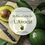 16 Bienfaits de l'Avocat