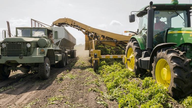 Tarım sübvansiyonları iklim krizini büyütüyor