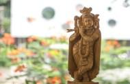 మురళీ