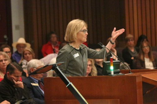 San Clemente City Councilwoman Lori Donchak spoke to the Orange County Emergency Medical Care Committee on April 29 about why the hospital is important to residents of the city. Photo: Eric Heinz