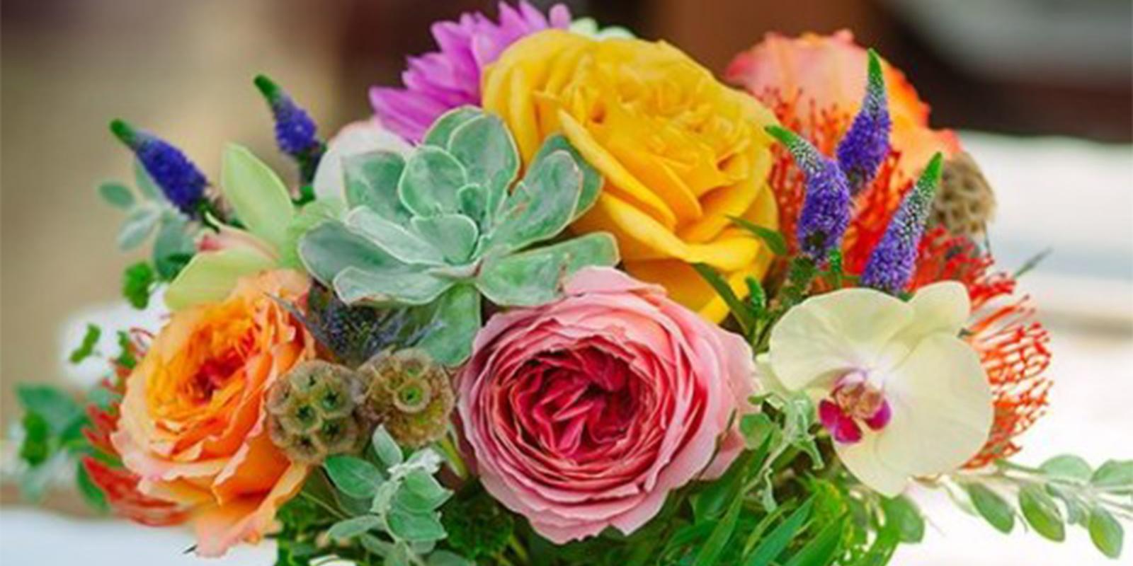 Casa Wellness Succulent Flower Arrangement Workshop San