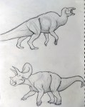 This sketch by Clarissa Koos depicts an Edmontosaurus, top, and a Triceratops, two species that now are special to her. Sketch courtesy of Koos family
