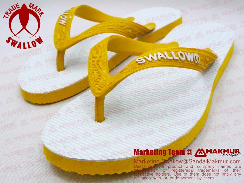 swallow-05d-04