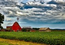 land, soil and natural vegetation