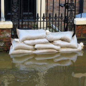 Filled Sand Bags