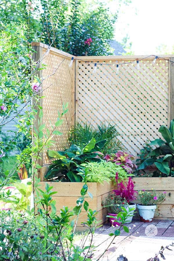 How We Built An Inexpensive Privacy Screen With Planter