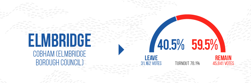 Brexit leave Graphics - Elmbridge