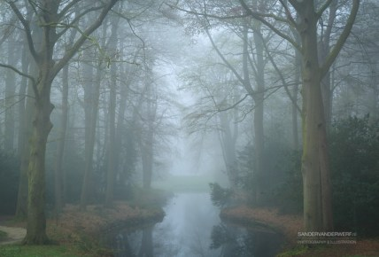 Pond in a landscape park on a foggy, spring day.