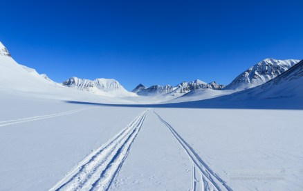 Crosscountry skiing tracks in a desolate valley.