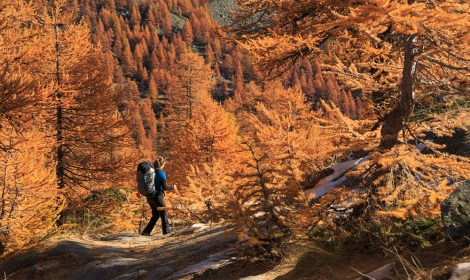 Hiking in the warm autumn colors of the Claree valley, France.