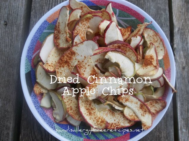 Dried Cinnamon Apple Chips