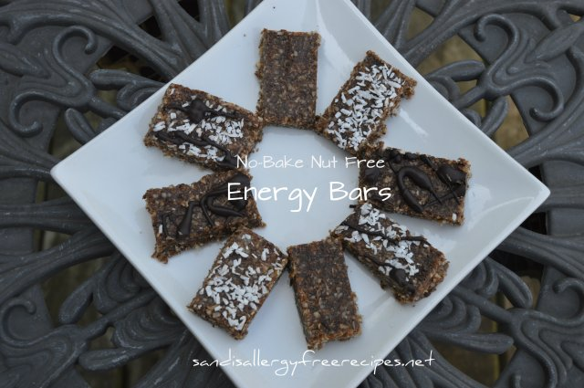 No-Bake Nut Free Energy Bars