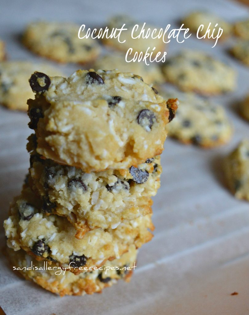 Coconut Chocolate Chip Cookies (Paleo/ Soy Free/ Grainfree/ Vegan/ Gluten Free/ Dairy Free/ Nut Free)