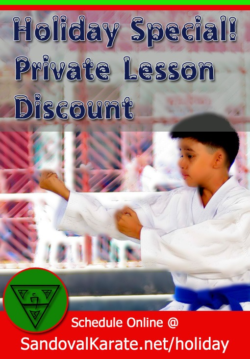 Private Holiday Karate Lessons