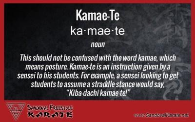Kamae-Te